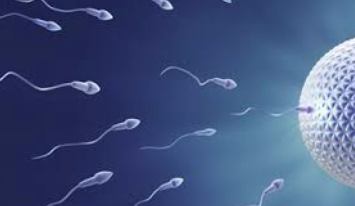 Oligospermia low Sperm Count Homeopathy Treatment Homeopathy Doctor India