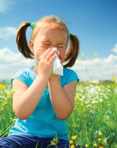Allergic Rhinitis Homeopathy Treatment Homeopathy Doctor India